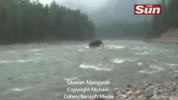 Sibiryada Mamut lar mı yaşıyor – Sibe…