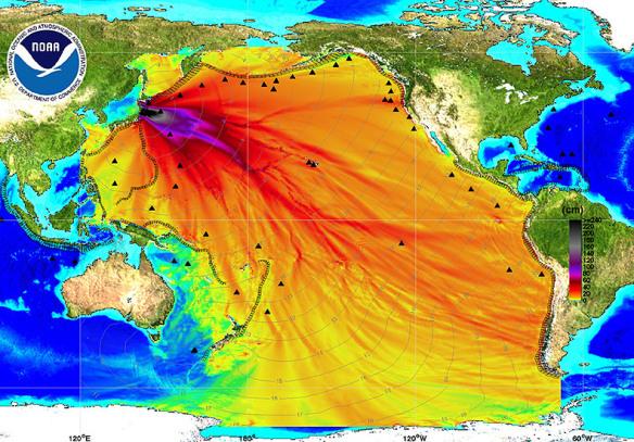 Fukushima radyasyonları ne oldu ? Mayı…